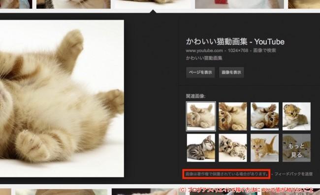 Google画像検索イメージ